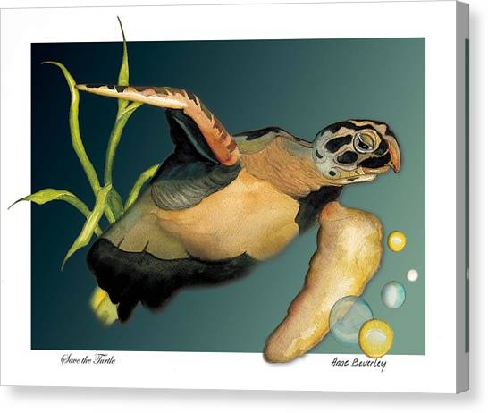 Save The Turtle Canvas Print