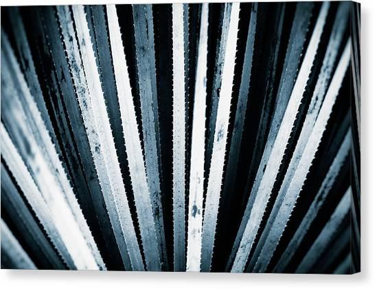 Conservatories Canvas Print - Sawtooth by Scott Norris