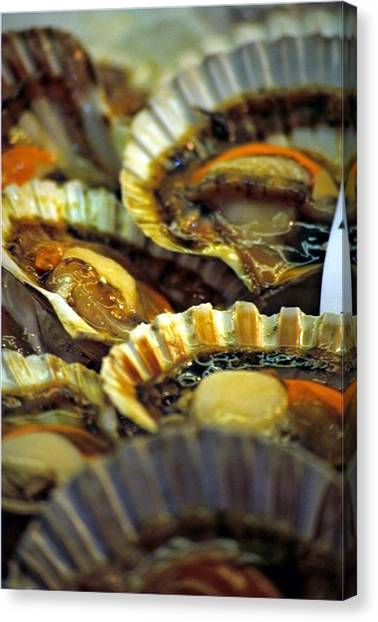 Scallops At Rialto Market In Venice Canvas Print by Michael Henderson