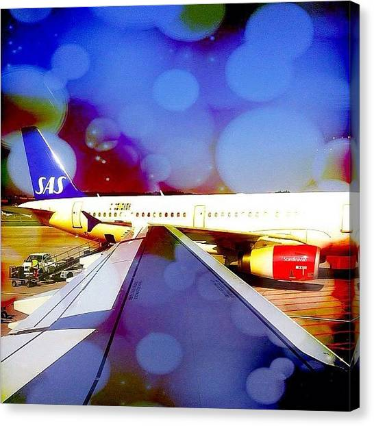Swiss Canvas Print - Scandinavian Airlines #sas #flysas by Dimitre Mihaylov