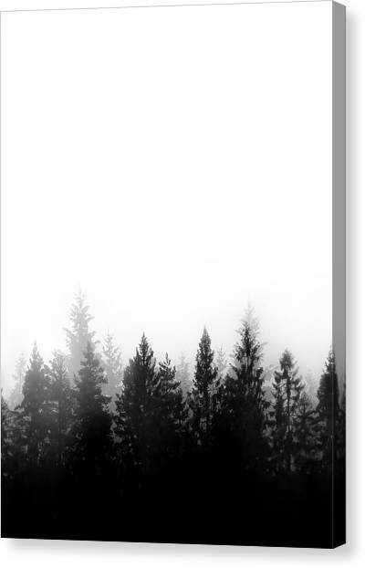 Black Forest Canvas Print - Scandinavian Forest by Nicklas Gustafsson