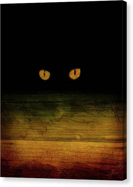 Scare-d-cat Canvas Print