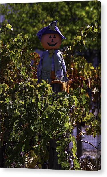 Scarecrows Canvas Print - Scarecrow In The Vineyards by Garry Gay
