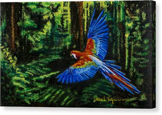 Scarlet Macaw In The Forest Canvas Print