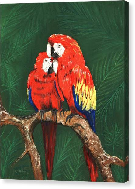 Canvas Print featuring the painting Scarlet Macaws by Anastasiya Malakhova