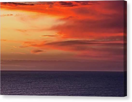 Australian Canvas Print - Scarlet Moods by Az Jackson