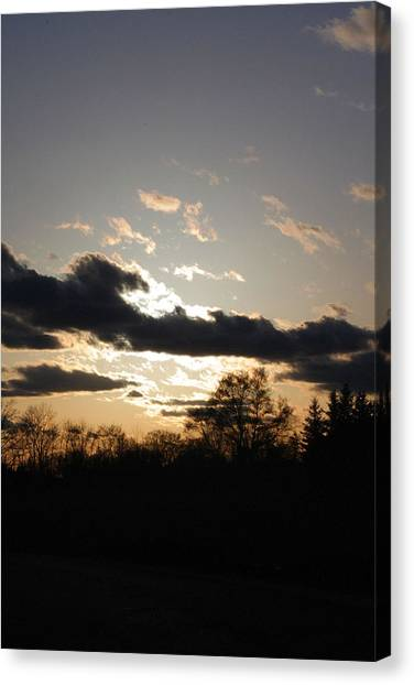 Scattered Shadows Canvas Print by Mark  France