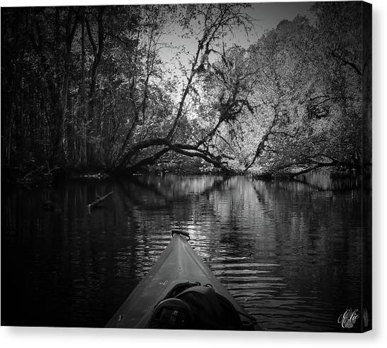 Scenes From A Kayak, No. 8 Canvas Print