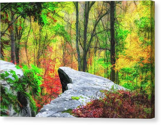 Cliff Canvas Print - Scenic View by Tom Mc Nemar