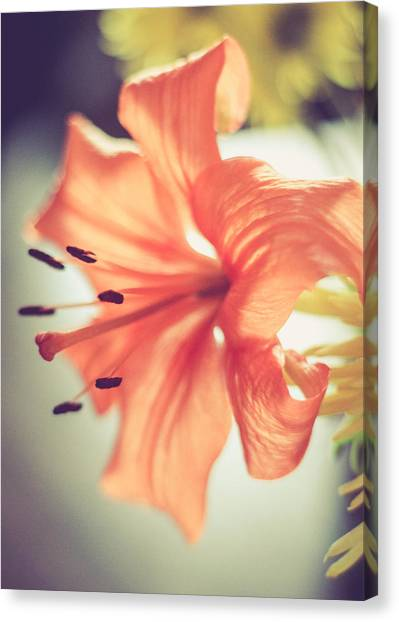 Canvas Print featuring the photograph Scent Of Spring by Viviana  Nadowski