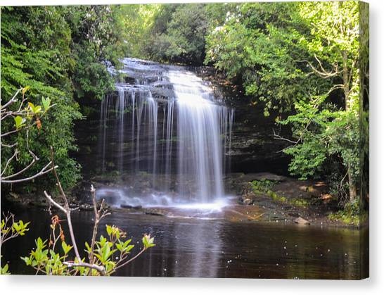 School House Falls Canvas Print