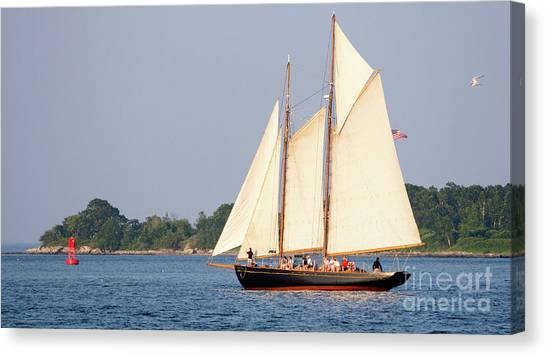 Schooner Cruise, Casco Bay, South Portland, Maine  -86696 Canvas Print