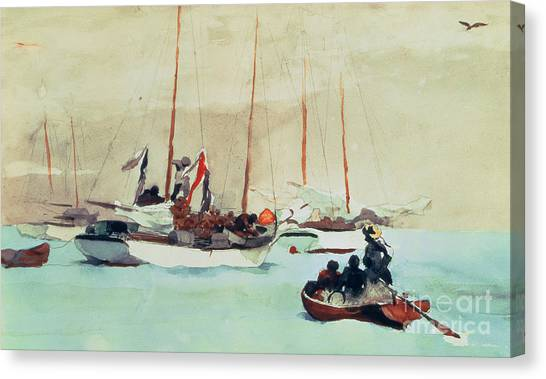 Seagulls Canvas Print - Schooners At Anchor In Key West by Winslow Homer