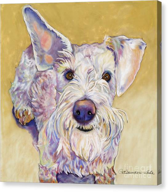 Schnauzers Canvas Print - Scooter by Pat Saunders-White