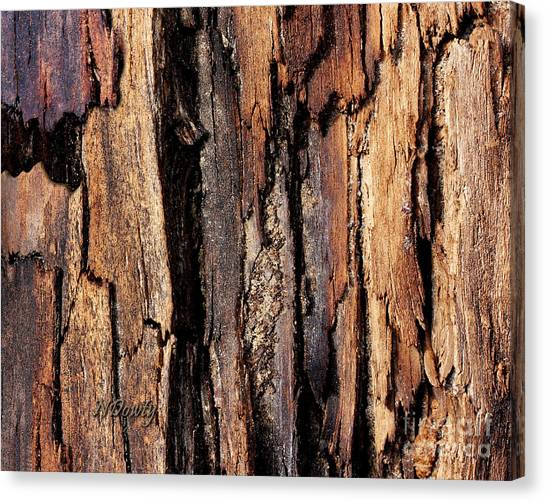 Scorched Timber Canvas Print
