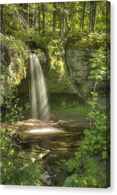 Alger Waterfalls Canvas Print - Scott Fall Summer by Michael Peychich