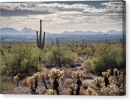 Scottsdale Arizona Canvas Print