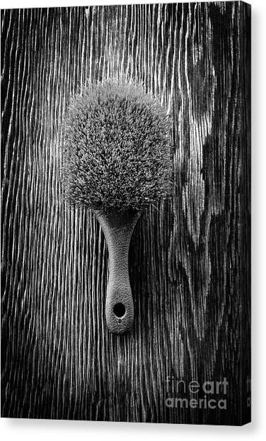 Scrub Brush Up Bw Canvas Print