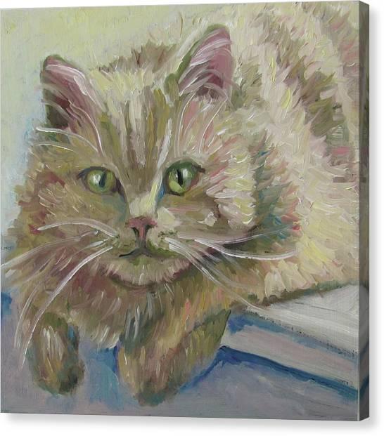 Scruffy Canvas Print
