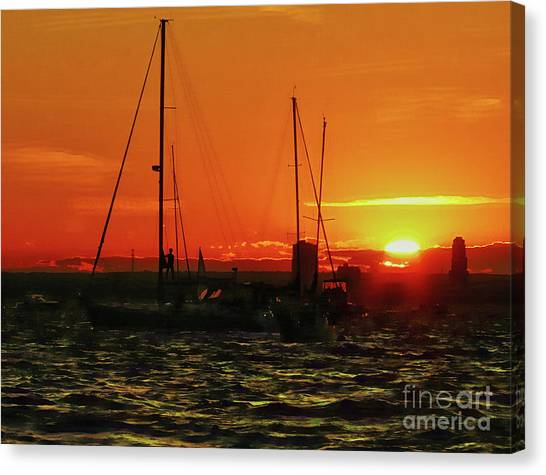 Sea Cliff Sunset Canvas Print