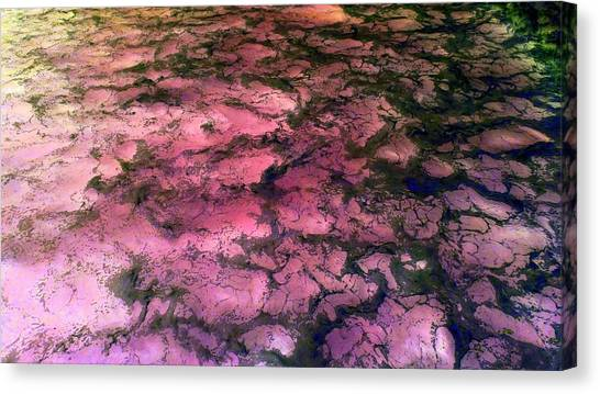 Sea Foam Pinkish Black Canvas Print
