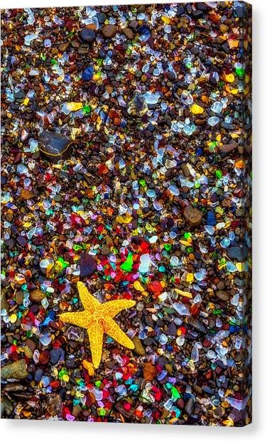 Saltwater Life Canvas Print - Sea Glass And Starfish by Garry Gay
