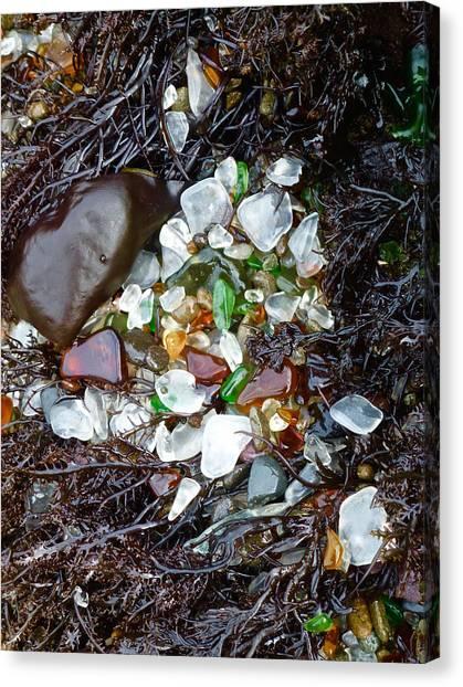 Sea Glass Nest Canvas Print