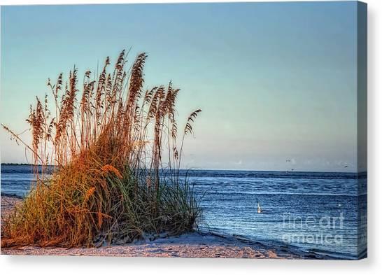 Sea Grass View Canvas Print