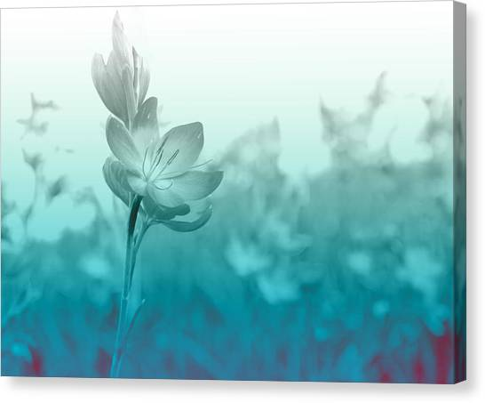 Bloom Canvas Print - Sea Green Haze by Barbara  White
