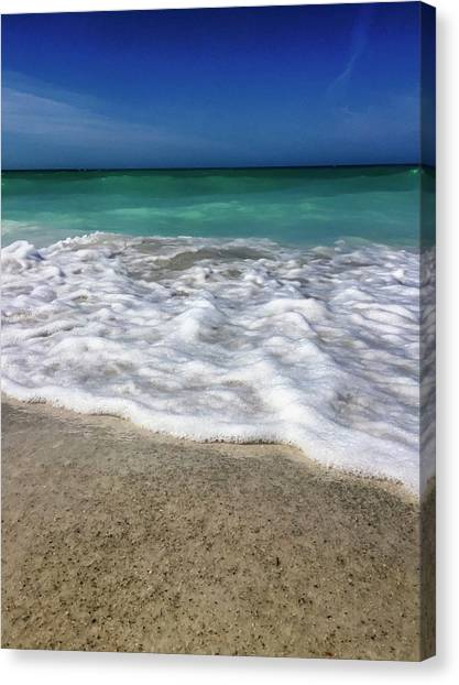 Sea Latte Canvas Print