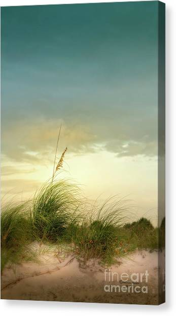 Seagrass Canvas Print - Sea Oats And Florwers by Marvin Spates