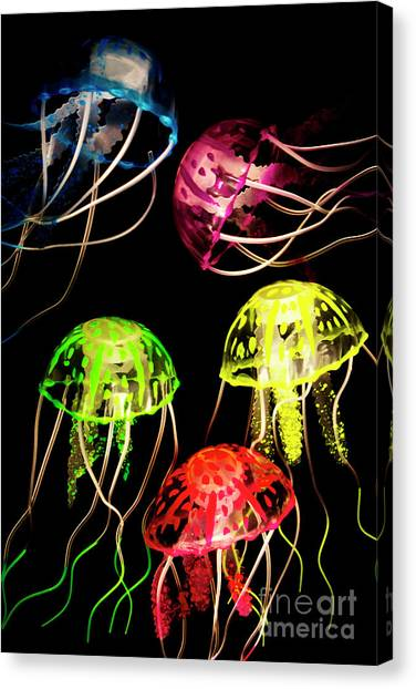 Saltwater Life Canvas Print - Sea Of Colours by Jorgo Photography - Wall Art Gallery