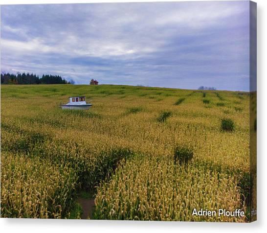 Corn Maze Canvas Print - Sea Of Gold by Adrien Plouffe
