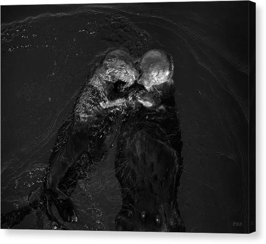 Sea Otters II Bw Canvas Print