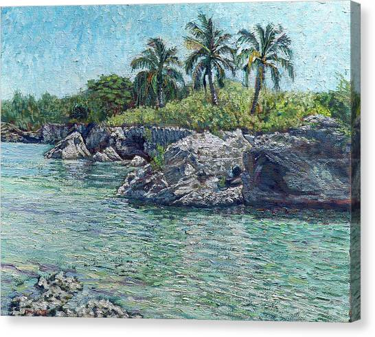 Sea, Rocks And Coconuts Canvas Print