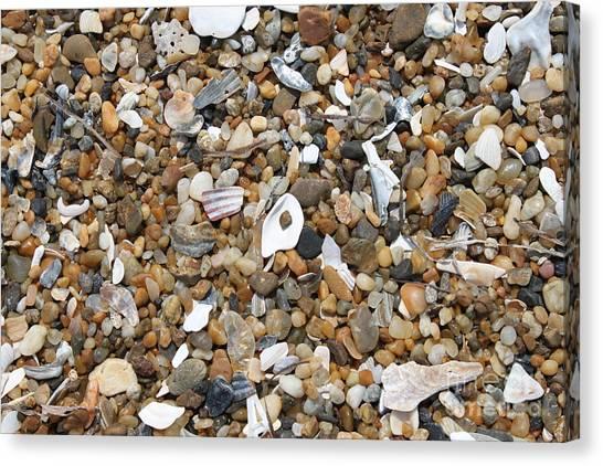 Sea Rocks Canvas Print by Marcie Daniels
