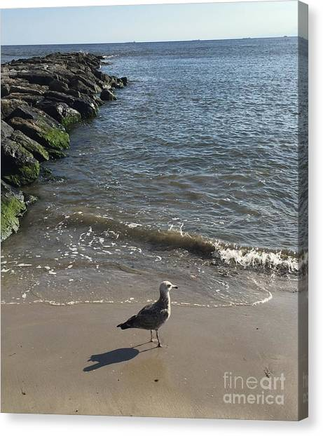 Sea Shadow Canvas Print