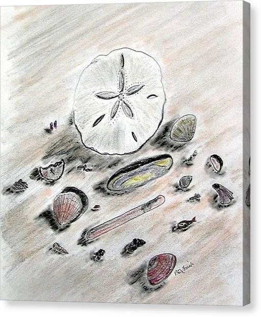 Sea Shells Canvas Print by Diane Frick