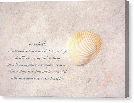 Pamela Wells Canvas Print - Sea Shells by Pamela Williams
