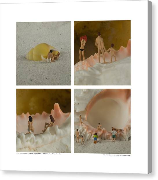 Sea Shells With Preiser Figurines Number Two Canvas Print by Rolf Bertram