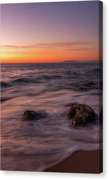 Sea Survivors Canvas Print