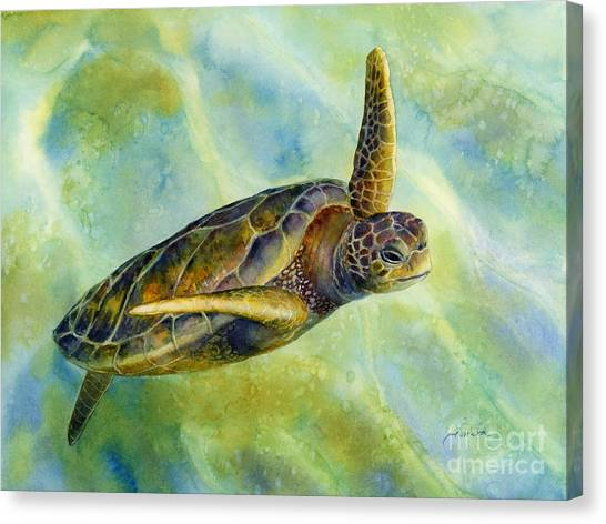 Tortoises Canvas Print - Sea Turtle 2 by Hailey E Herrera