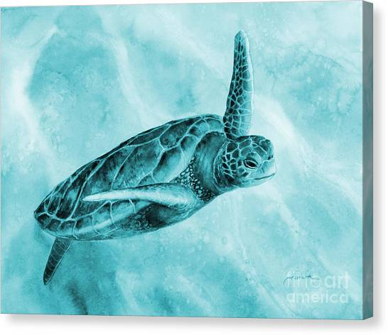 Flipper Canvas Print - Sea Turtle 2 On Blue by Hailey E Herrera