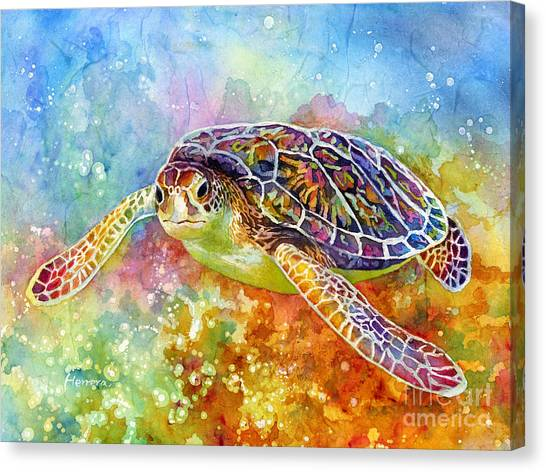 Tortoises Canvas Print - Sea Turtle 3 by Hailey E Herrera