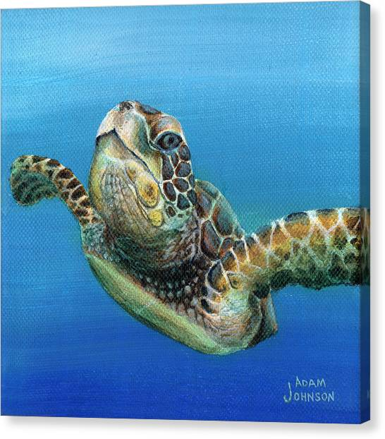 Sea Turtle 3 Of 3 Canvas Print
