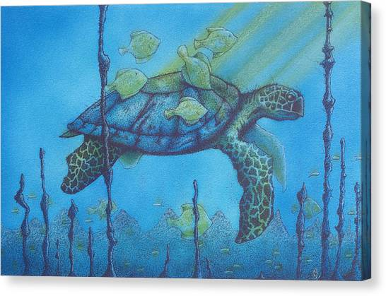 Sea Turtle And Fish Canvas Print by Erik Loiselle