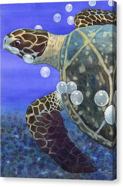 Sea Turtle Canvas Print by Catherine G McElroy