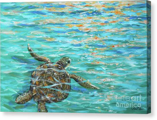Sea Turtle Dream Canvas Print