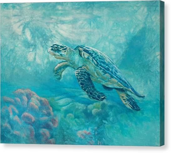 Sea Turtle Canvas Print by Vicky Russell
