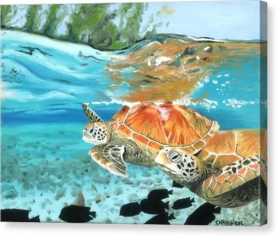 Sea Turtles Canvas Print by Chris Wiese